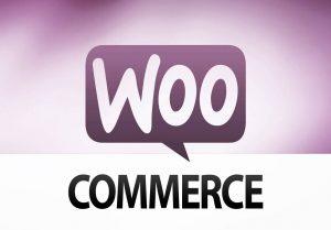 temas para tienda online de wordpress